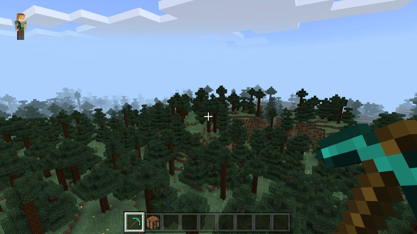 A Taiga biome in Minecraft