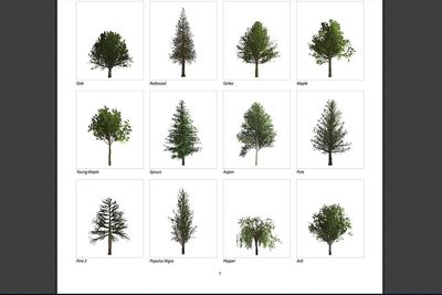 Trees in photoshop screengrab