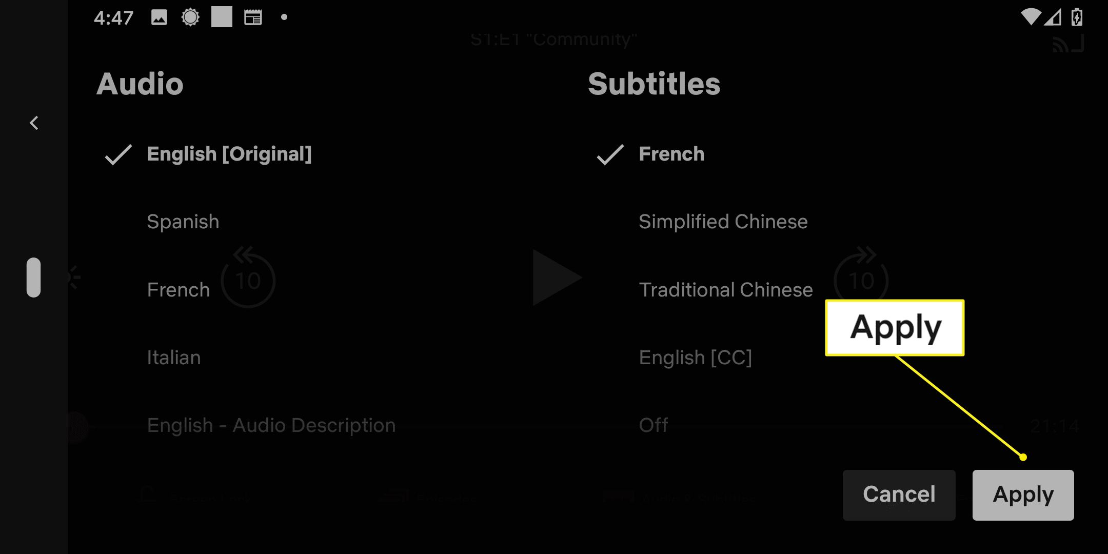 Subtitle options in the Netflix app with Apply highlighted