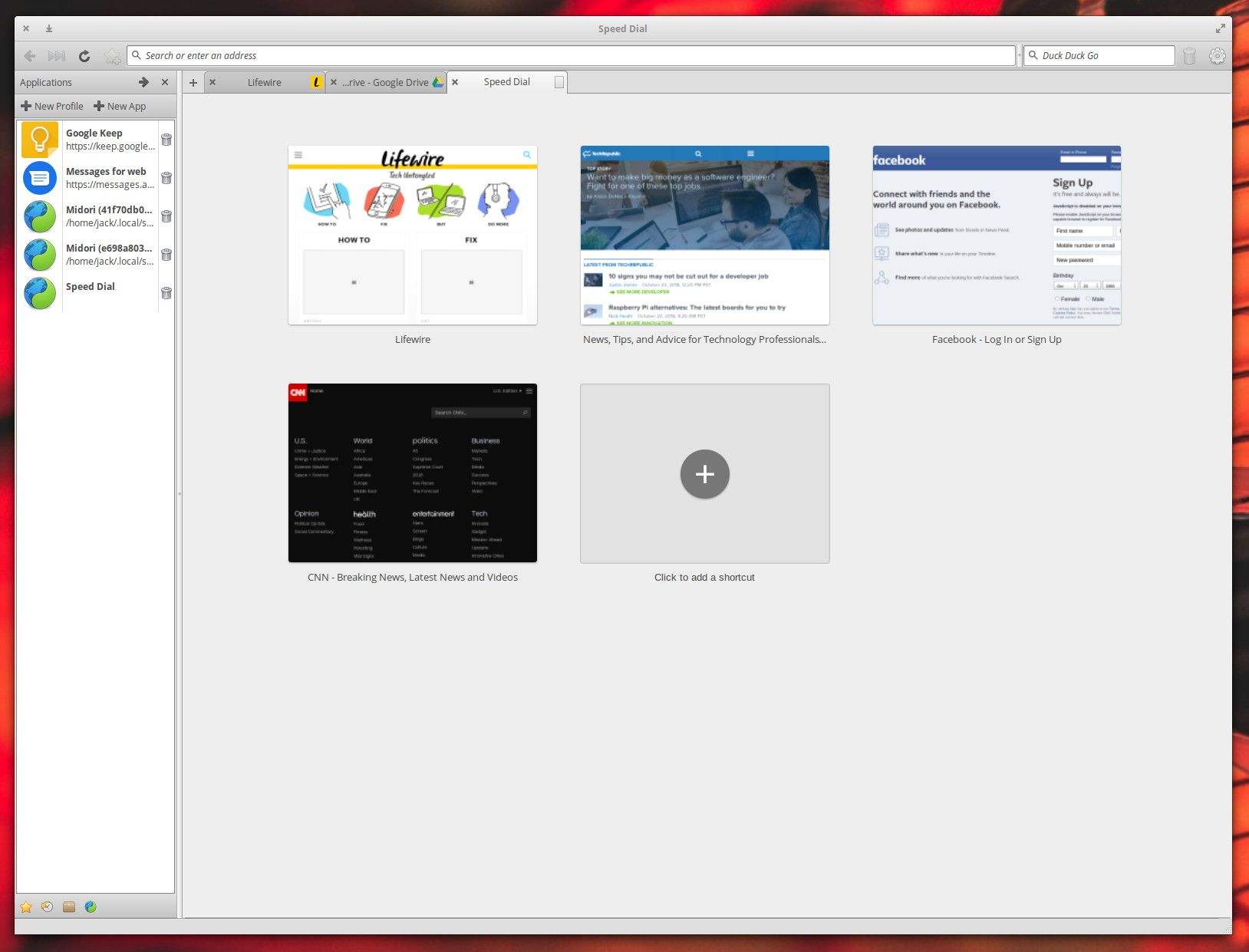 The Midori web browser running on Linux