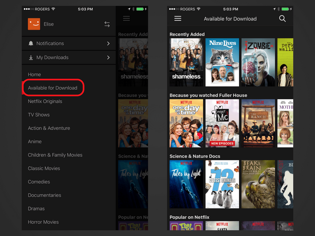 how to download movies on netflix via laptop