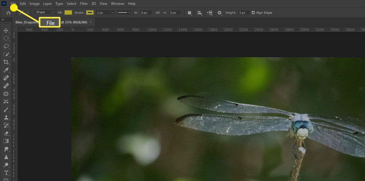 The File option in Photoshop.