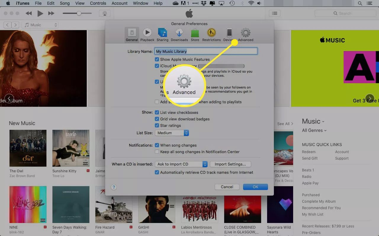 iTunes preferences with the Advanced tab highlighted