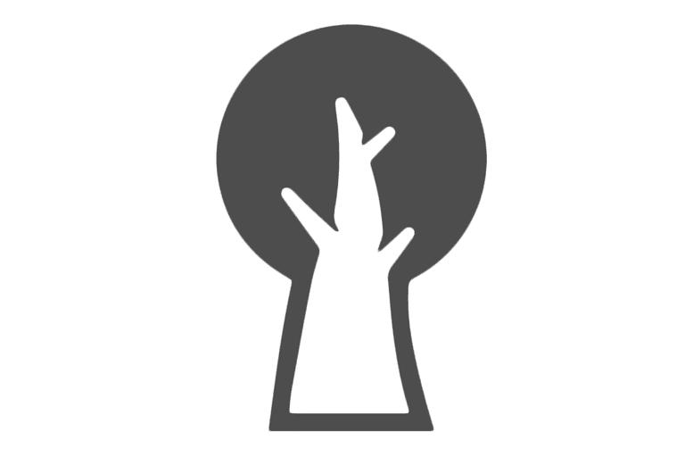 Screenshot of the SpiderOak logo