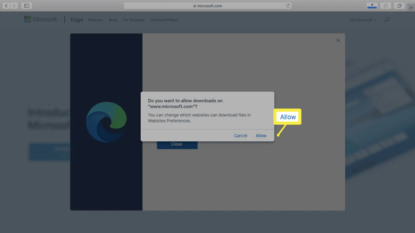 A screenshot of allowing a download in Safari.