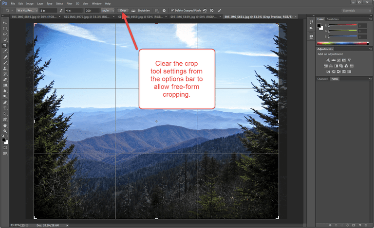 Photoshop Crop Options screenshot