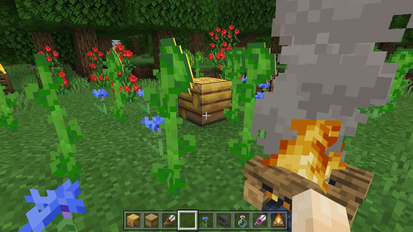 Place the campfire near the hive.