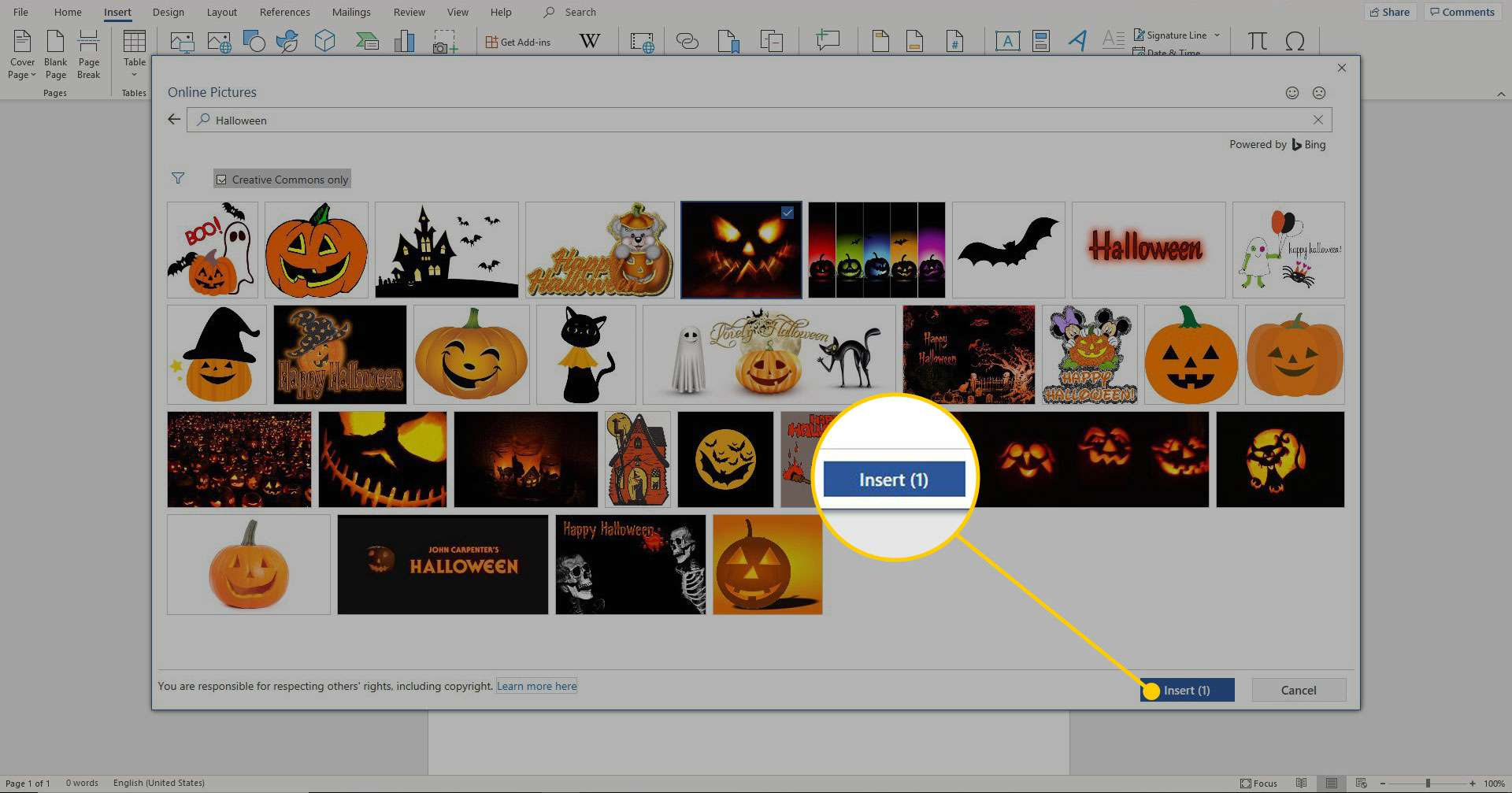 Online Pictures window in Word with the Insert button highlighted