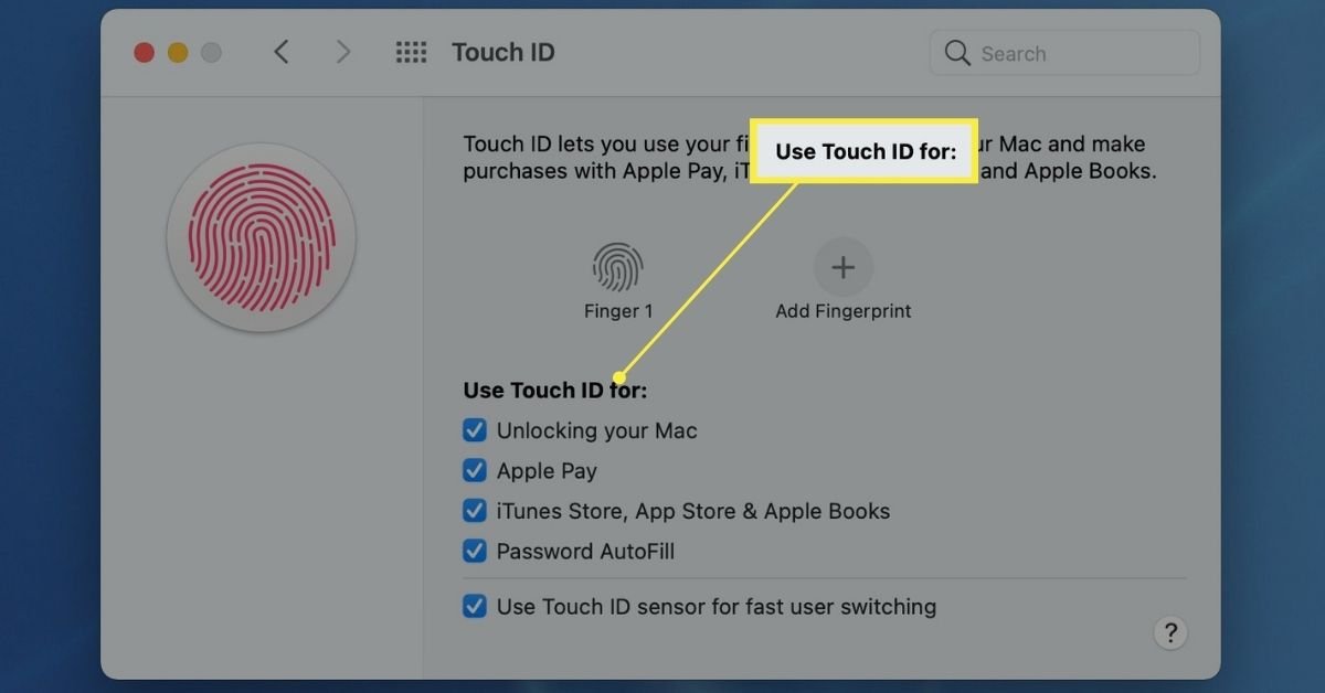 The Use Touch ID For section highlighted in Touch ID settings