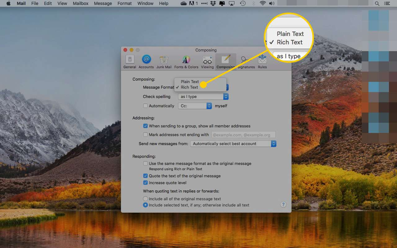 Composing preferences in Mail with the Message Format pulldown highlighted