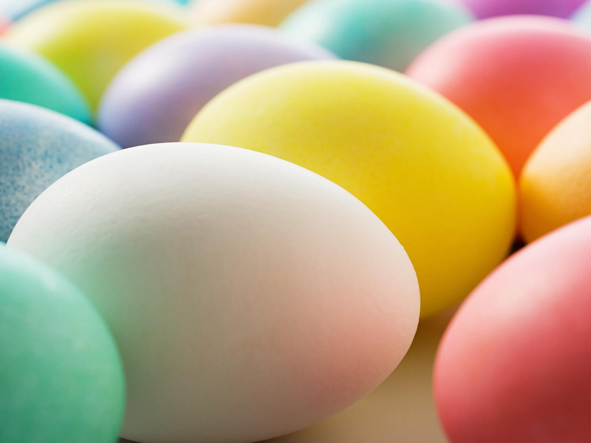 Closeup Easter Egg Wallpaper