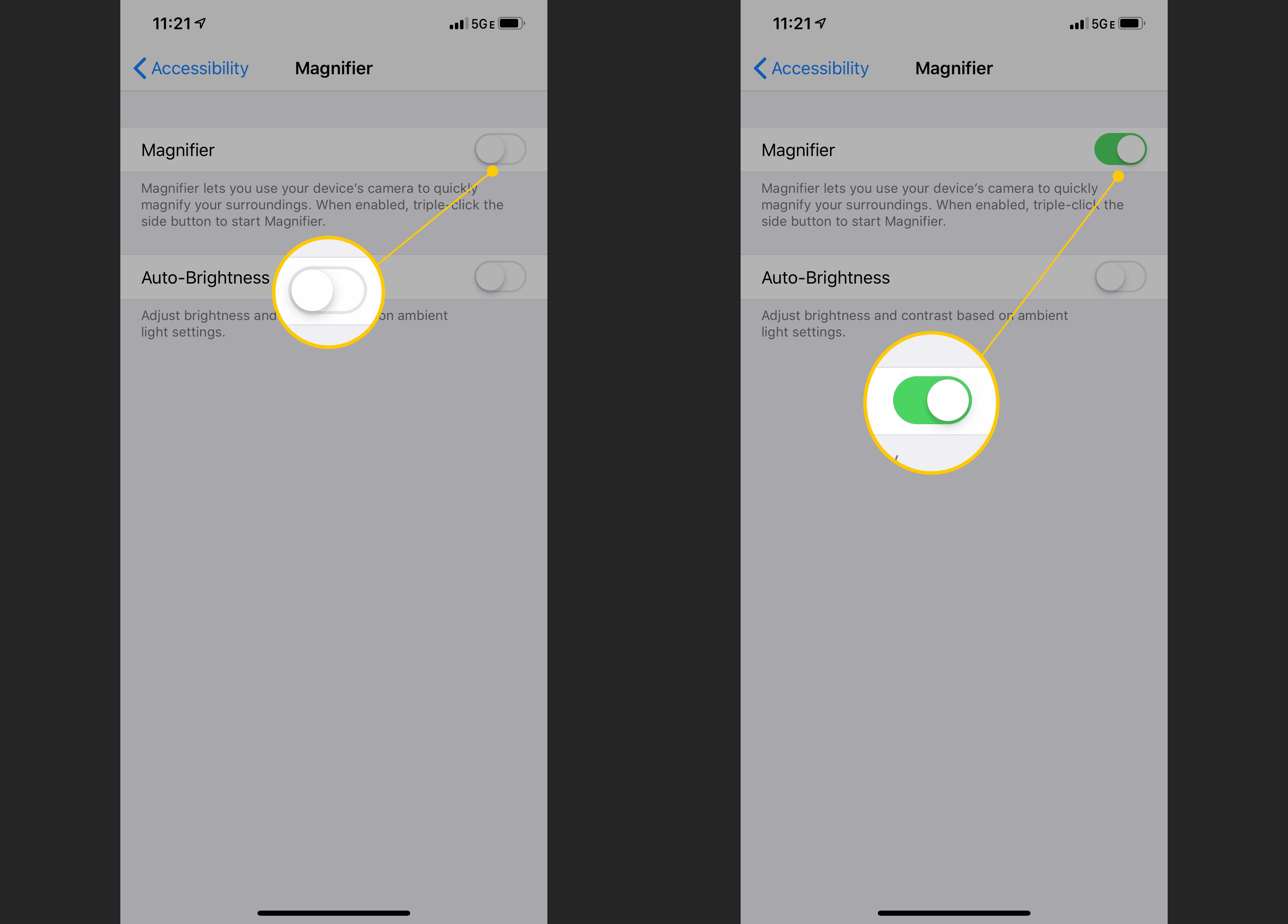 Magnifier toggle in iOS Settings