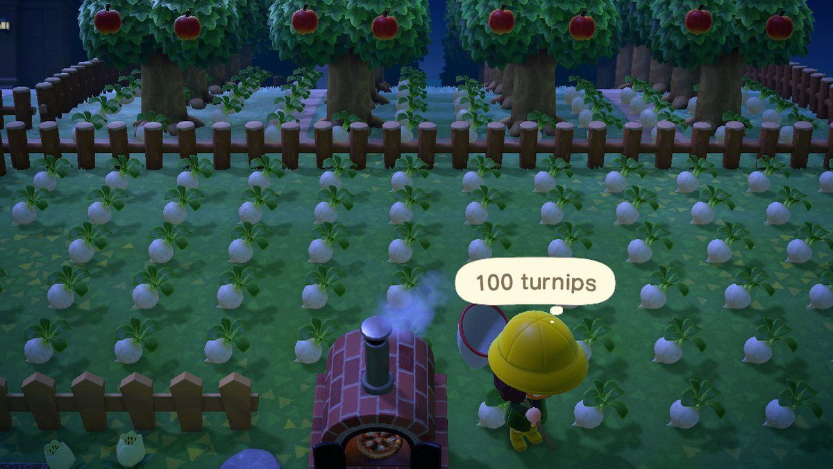 Turnips in Animal Crossing.