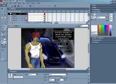Screenshot of flash editing