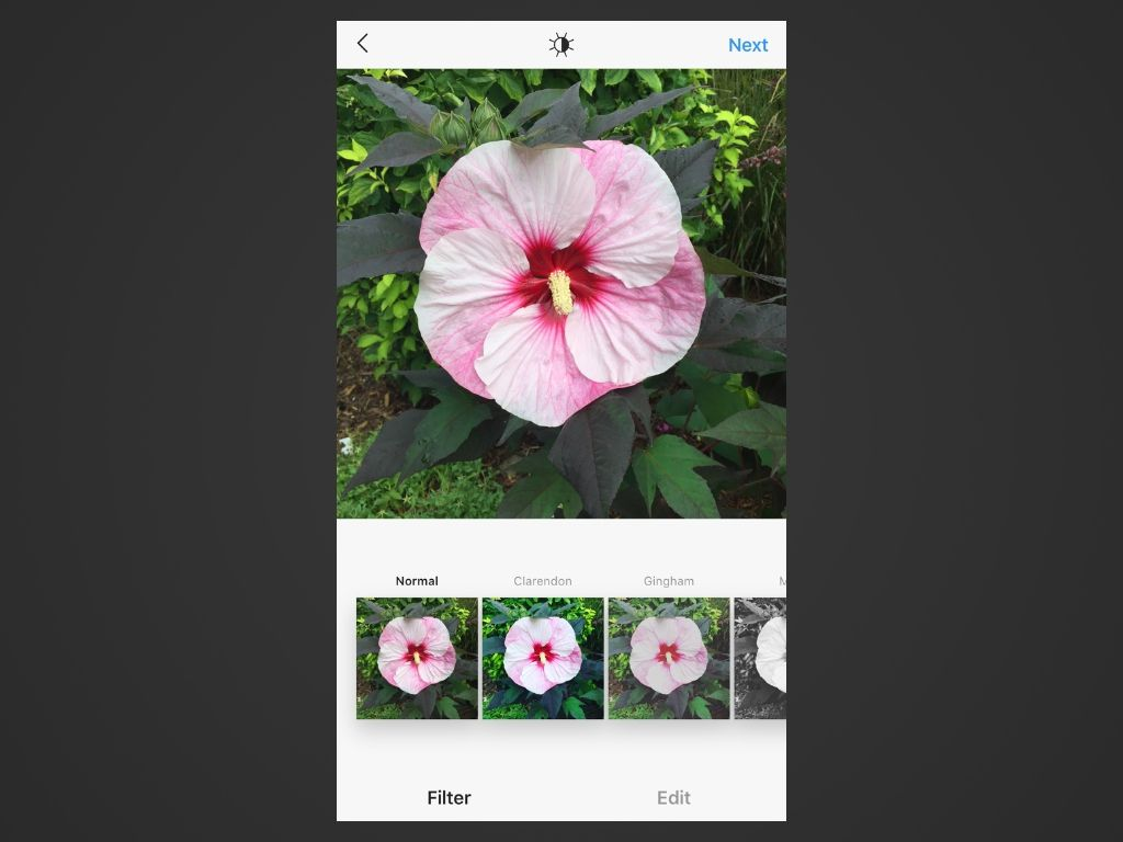 A screenshot of Instagram for iOS