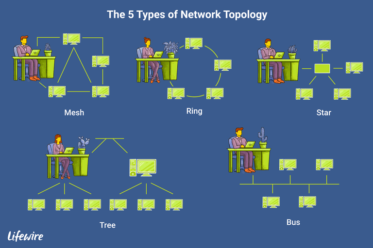 Five types of network topology, illustrated: Mesh, Ring, Star, Tree, Bus