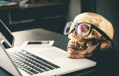 A spooky Halloween skull looks at a laptop