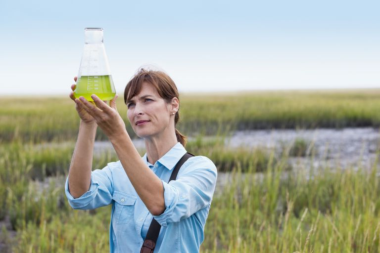 Woman in field holding a beaker full of green liquid.