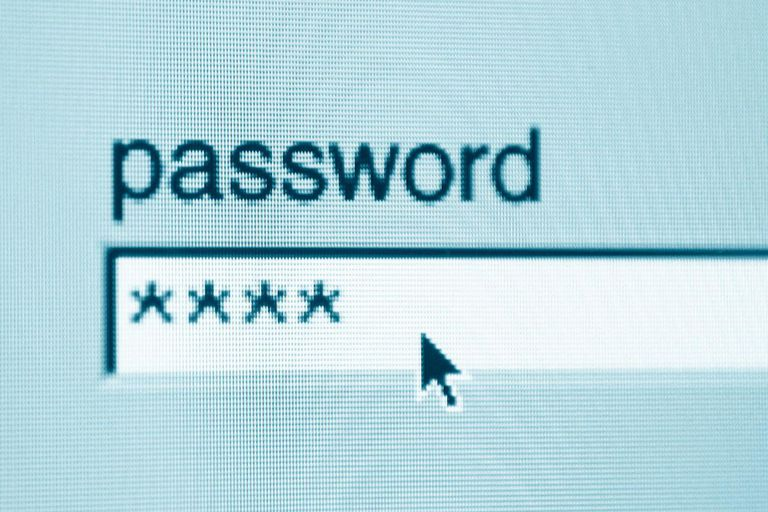 Picture of a password textbox