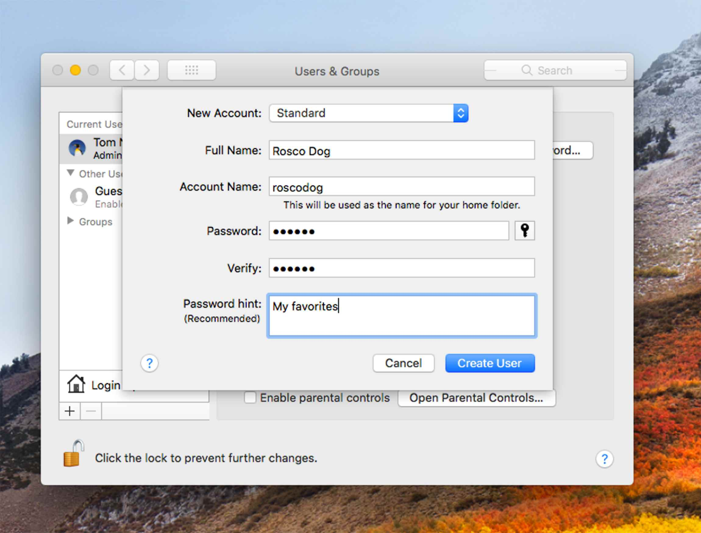 Standard account creation in macOS
