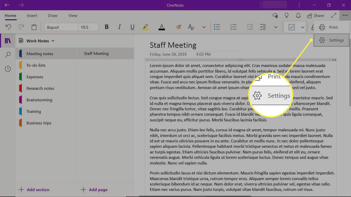 The Settings for the OneNote desktop app