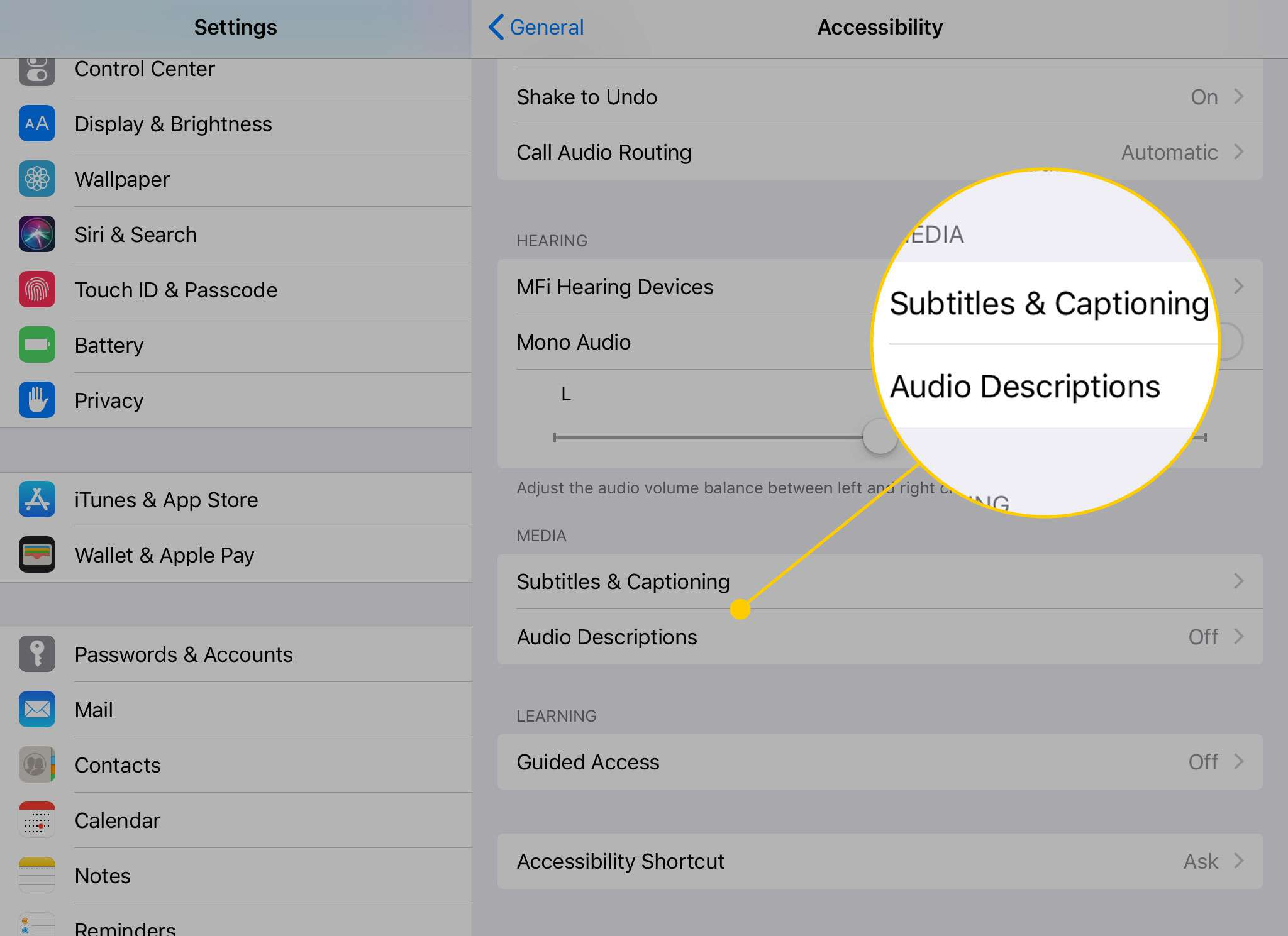 Accessibility options on the iPad with the Subtitles & Captioning and Audio Descriptions headings highlighted