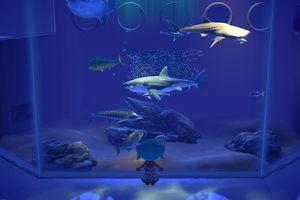 Animal Crossing: New Horizons shark tank aquarium