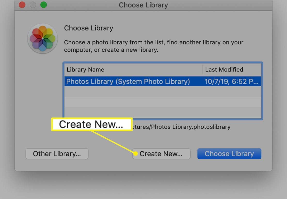 The iPhone Choose Library window