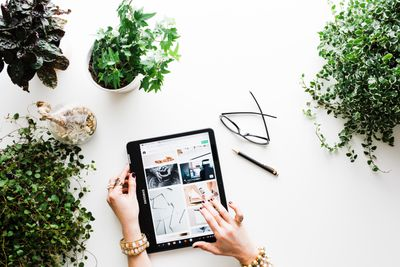 Remote worker using tablet surrounded by plants