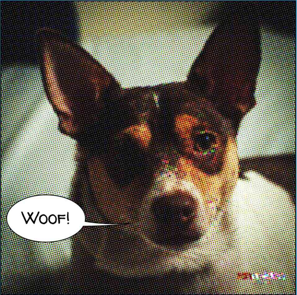 A rat terrier image that has been turned into a comic.