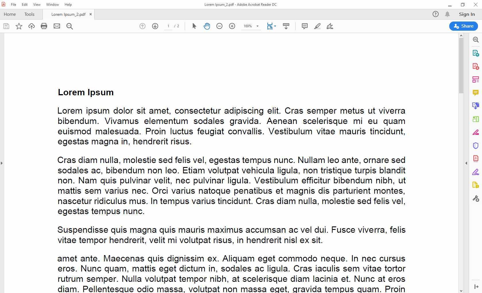 Adobe Acrobat Reader with new PDF open