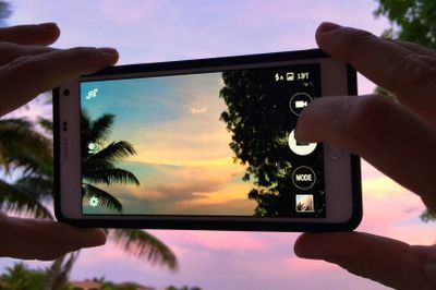 hands on a cellphone taking picture of sky with palm tree at sunset