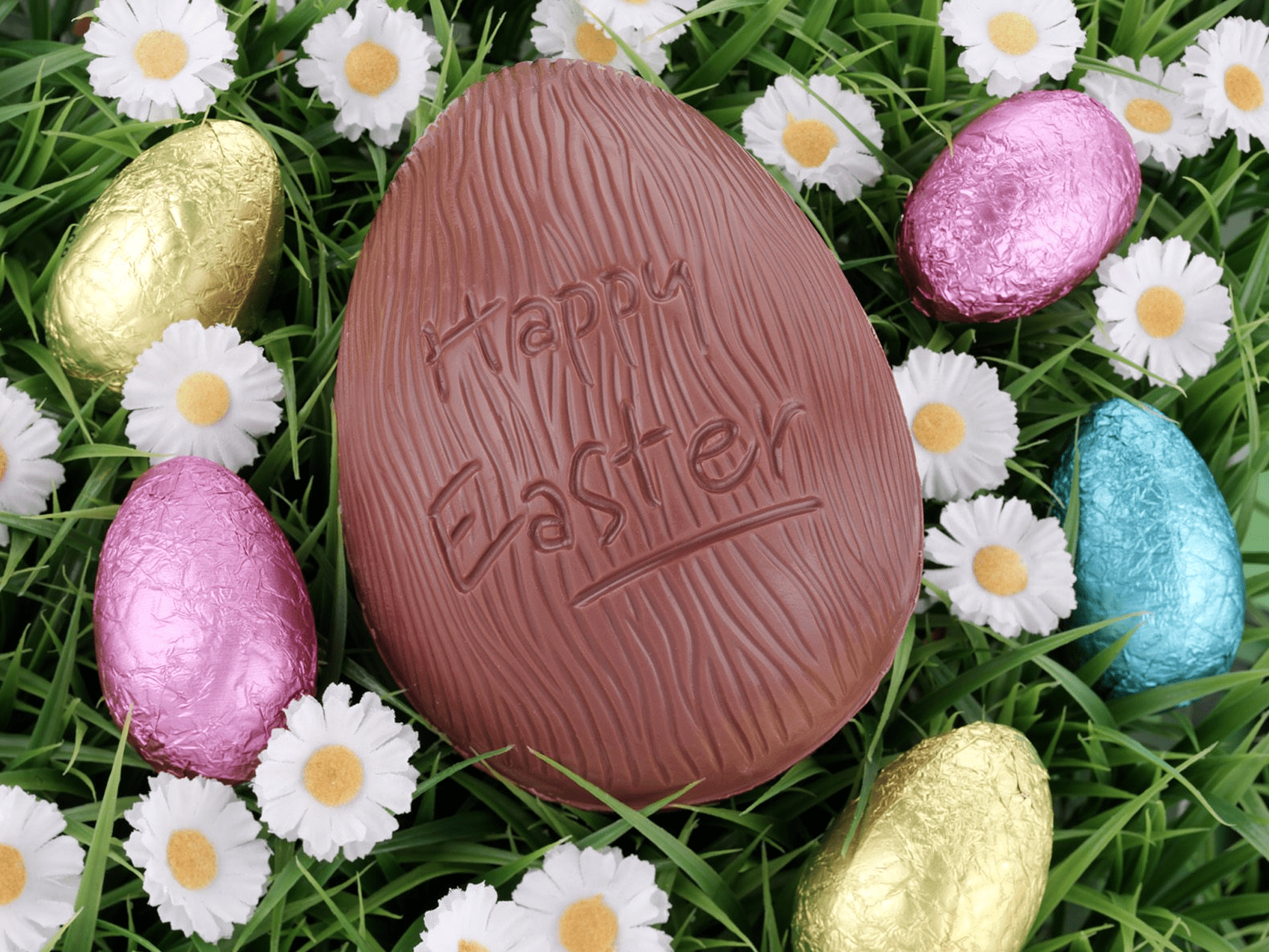 Free Easter wallpaper featuring a chocolate Easter egg surrounded by daisies and colorfully wrapped eggs
