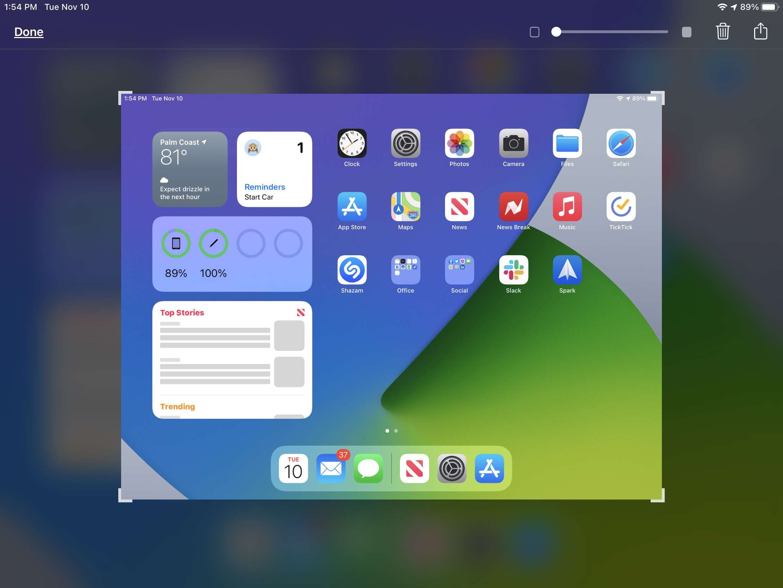 iPad Screenshot Captured with Apple Pencil