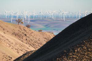 A windfarm.