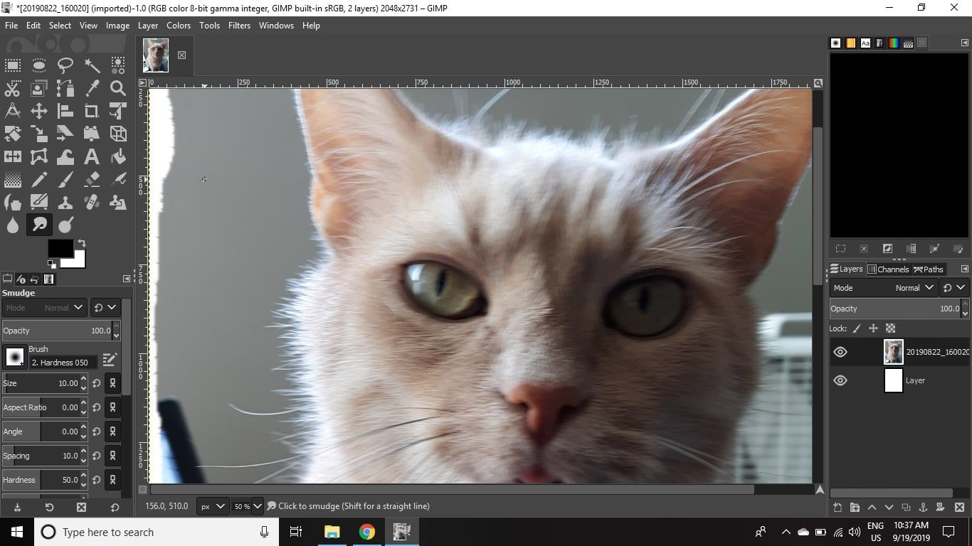 Place your cursor just inside one of the edges of the image, and then click and drag outside of the image.