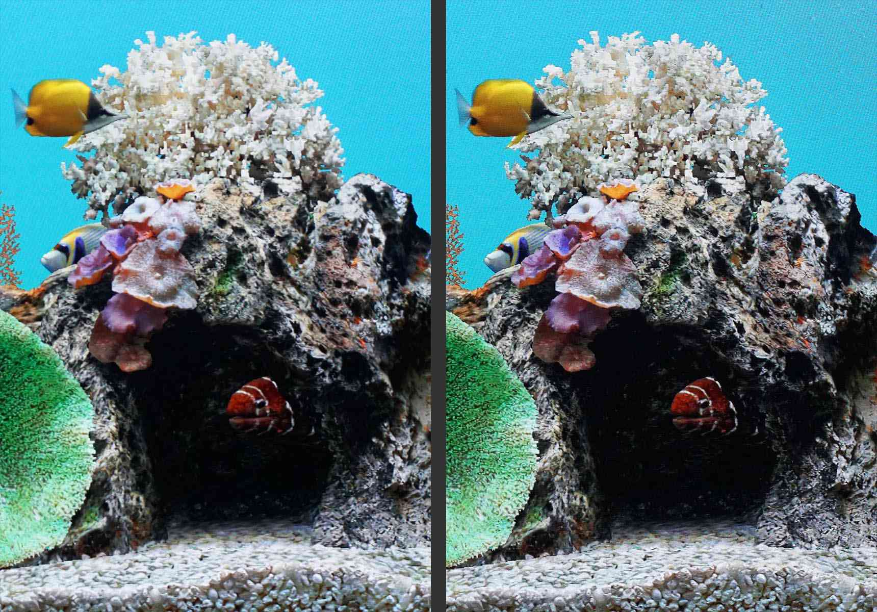 TV Sharpness Comparison Example – Low Setting