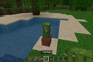 A cactus on the ground in Minecraft