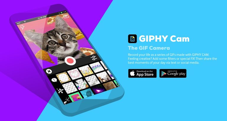 A screenshot of Giphy.com.