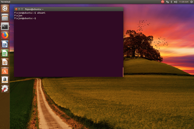 whoami Linux command in Ubuntu