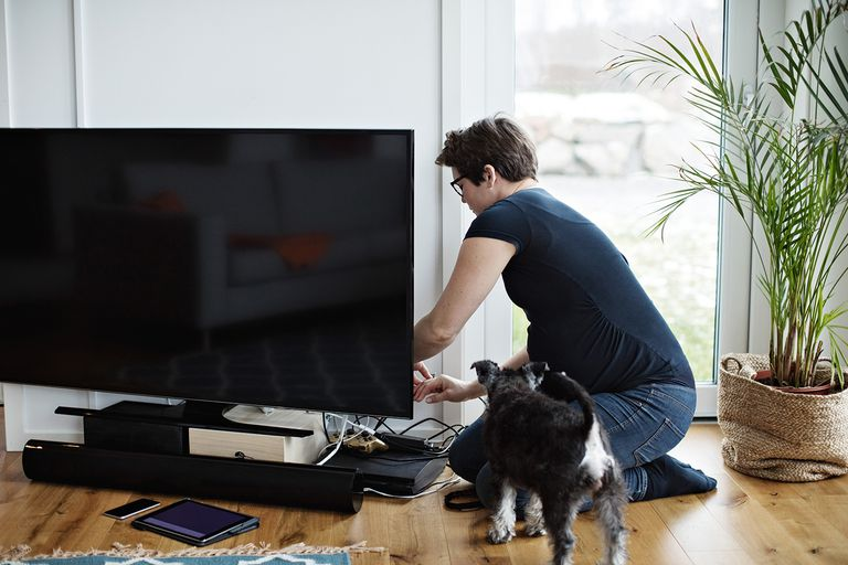 Pregnant woman arranging cables of television set while kneeling by dog in living room