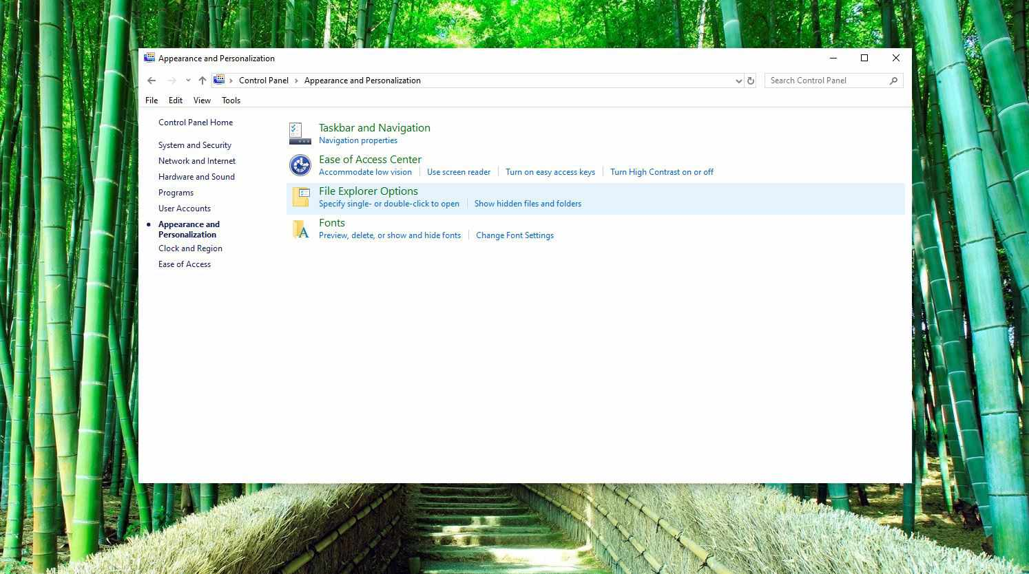Screenshot of File Explorer Options in Appearance and Personalization