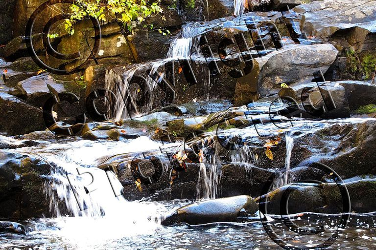 Watermarked Photo