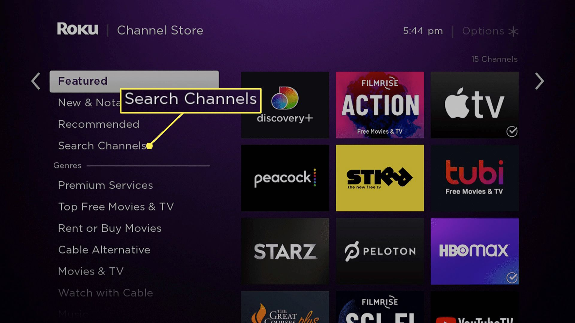 The Roku channel store with Search Channels highlighted.