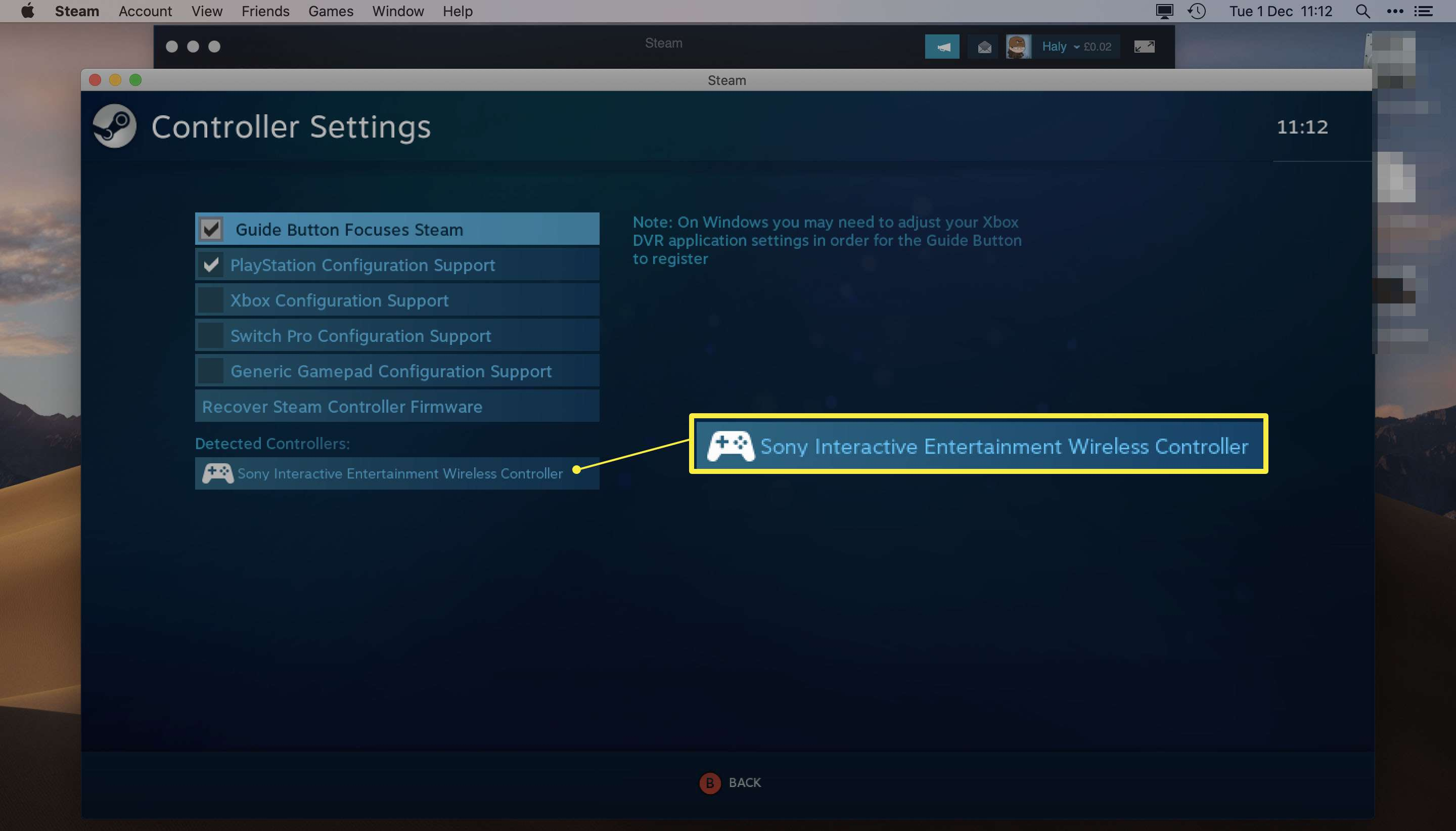 Steam app with Controller Settings open and Sony Wireless Controller highlighted