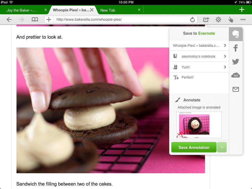 A screenshot of Dolphin Browser running on an iPad