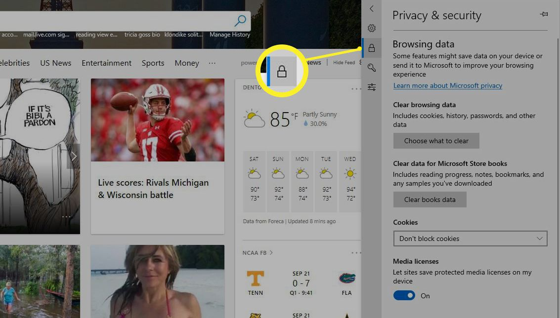 Edge Privacy & security settings