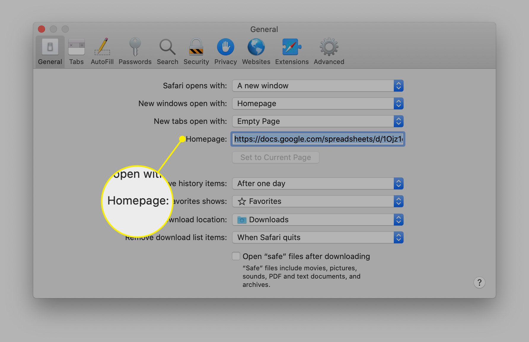 The Homepage option in Safari general preferences