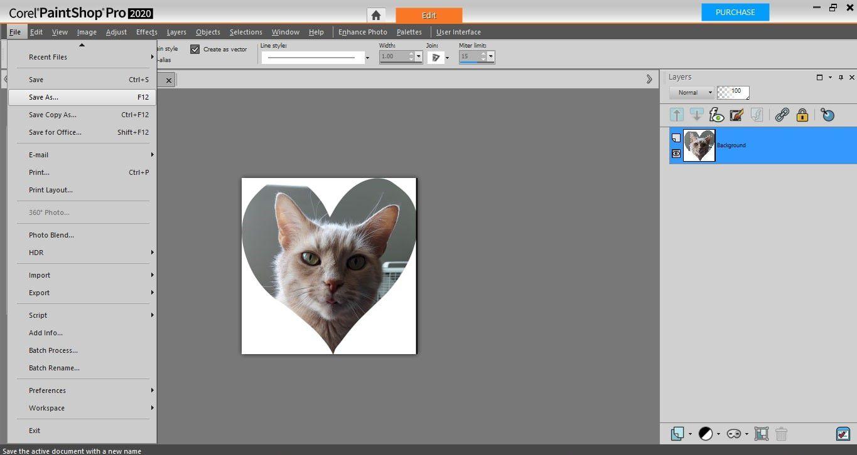 A heart-shaped cutout of a cat in PaintShop Pro