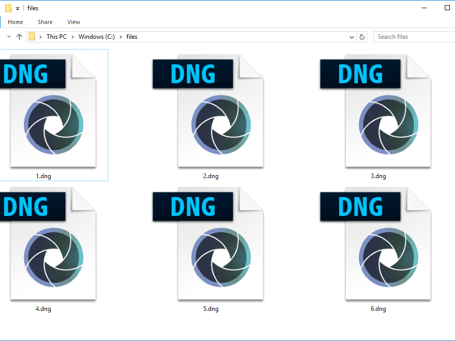 DNG File (What It Is & How to Open One)